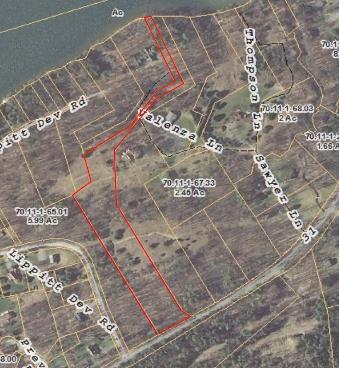 Baldo-Johnson Land tax map4_001